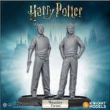 Harry Potter Miniatures Adventure Game: Fred and George Weasley Expansion